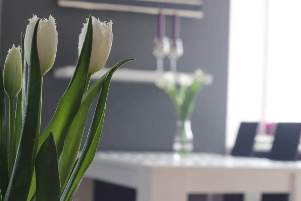 Tulpen im Wohnzimmer